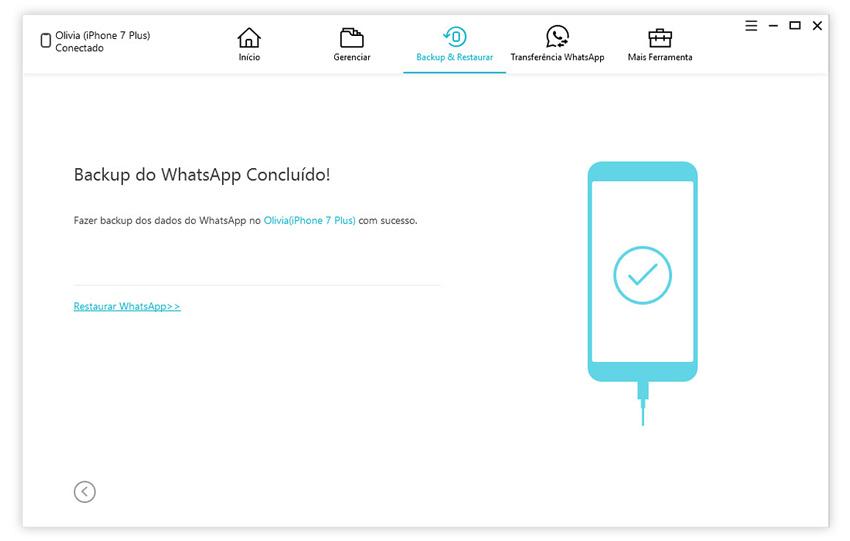 guia de fazer backup de conversas do whatsapp com icarefone etapa 3